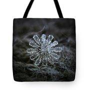 December 18 2015 - Snowflake 3 Tote Bag by Alexey Kljatov