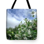 Reaching For The Light Tote Bag