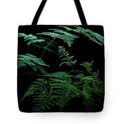 Asparagus Fern Tote Bag