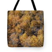 Aspen Autumn Leaves Tote Bag
