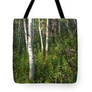 Aspen Solitude Tote Bag by Lon Dittrick