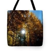 Aspens Sunlight 2 Tote Bag