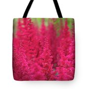 Astilbe Fanal Flowers Tote Bag