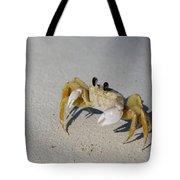 Atlantic Ghost Crab Tote Bag by Thomas Kallmeyer