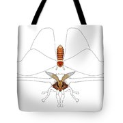 Atlas Moth1 Tote Bag