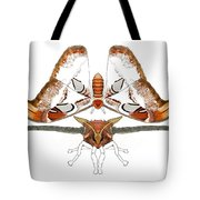 Atlas Moth2 Tote Bag