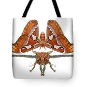 Atlas Moth5 Tote Bag