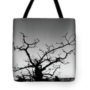 Atop Starved Rock Tote Bag