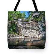 August Morning At Awosting Falls 2019 Tote Bag