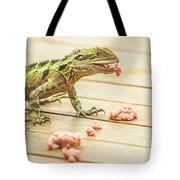 Australian Water Dragon Tote Bag