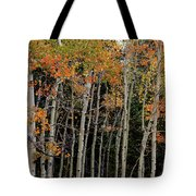 Autumn As The Seasons Change Tote Bag