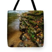 Autumn At Cherry Falls Elk River Tote Bag