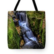Autumn At Pewits Nest Tote Bag by Dawn Richards