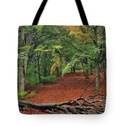 Autumn Blanket Tote Bag