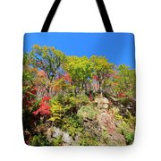 Autumn Color On Newfound Gap Road In Smoky Mountains National Park Tote Bag