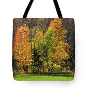 Autumn Colour In Southern Ontario Tote Bag