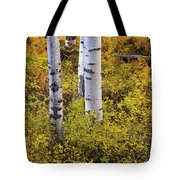 Autumn Contrasts Tote Bag by John De Bord