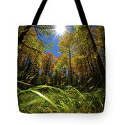 Autumn Forest Delight Tote Bag