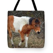 Autumn Glory N2bhs-ap On Assateague Island Tote Bag by Assateague Pony Photography