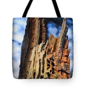 Autumn Knotty Tree Sculpture Tote Bag
