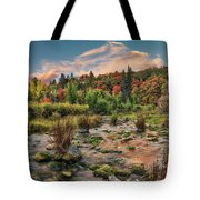 Autumn Light Reflections Tote Bag by Leland D Howard