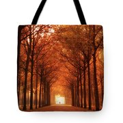Autumn Lights At Groeneveld Tote Bag