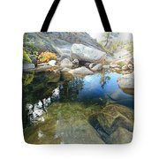 Autumn Liquid Dreamscape Tote Bag by Sean Sarsfield