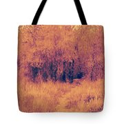 Autumn Mystery Tote Bag by David King