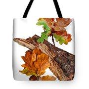 Autumn Oak Leaves And Acorns On White Tote Bag