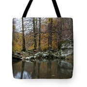 Autumn On The Kings River Tote Bag