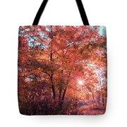 Autumn Path Reimagined Tote Bag