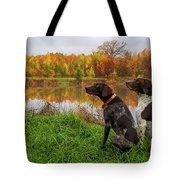 Autumn Pondering Tote Bag
