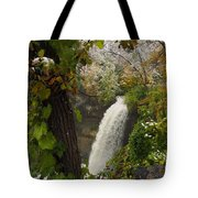 Autumn Snow Minnehaha Falls Tote Bag by James Peterson