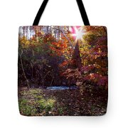 Autumn Starburst Tote Bag