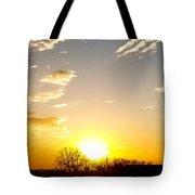 Autumn Sun Rising Over Barren Trees Tote Bag