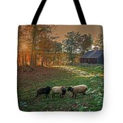 Autumn Sunset At The Old Farm Tote Bag by Wayne Marshall Chase