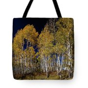 Autumn Walk In The Woods Tote Bag