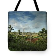 Autumnal Altamaha Tote Bag