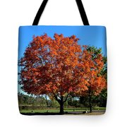Autumnal Beauty Tote Bag