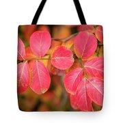Autumnal Hues Tote Bag