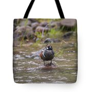 B63 Tote Bag by Joshua Able's Wildlife