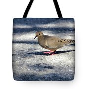 Baby Mourning Dove Tote Bag