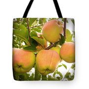 Backyard Garden Series - Apples In Apple Tree Tote Bag