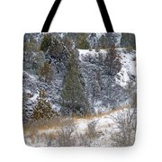Badlands Winter Tote Bag