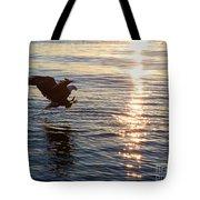 Bald Eagle At Sunset Tote Bag