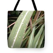 Bamboo And Water Tote Bag