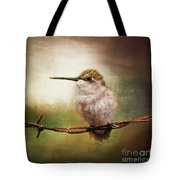 Barbed Wire Hummingbird Perch Tote Bag
