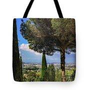 Barberini View Tote Bag