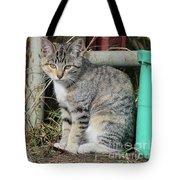 Barn Cat Tote Bag by Ann E Robson