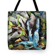 Bash Bish Falls - 3 Tote Bag